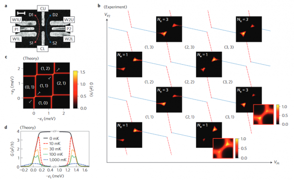 Kondo physics in a spin–charge-entangled double quantum