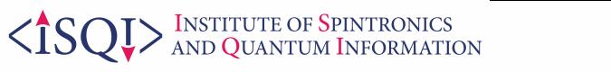 Institute of Spintronics and Quantum Information